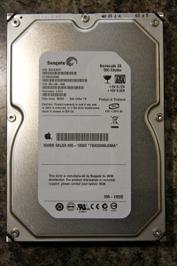 Seagate Barracuda ES 500GB